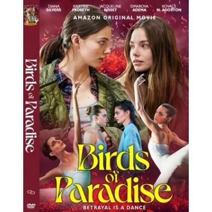 DVD English Movie Birds Of Paradise